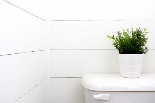 How to DIY shiplap walls in your bathroom!